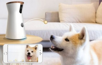 能投放零食与宠物狗互动的智能摄像头Furbo