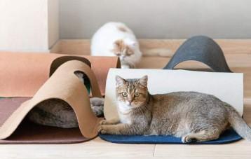 Pidan宠物猫咪跑道地毯