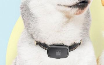 陪彼PetBit宠物猫狗GPS定位器