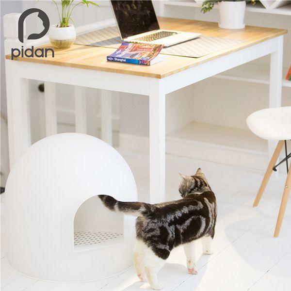 pidan6
